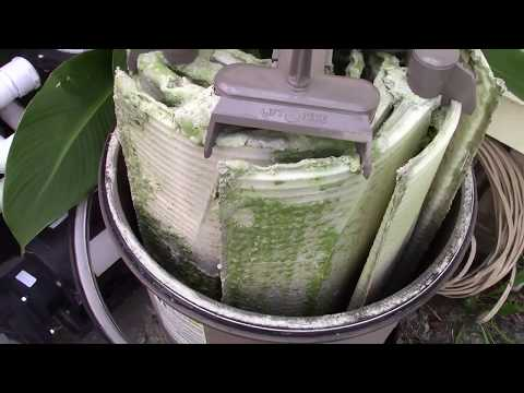 What Backwashing Leaves Behind - How To Clean Your D.E. Pool Filter THE EASY WAY!!!