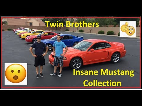 Mustang Week (end) 2019! Amazing Twin brother Mustang Collection