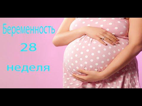 28 НЕДЕЛЯ БЕРЕМЕННОСТИ - YouTube