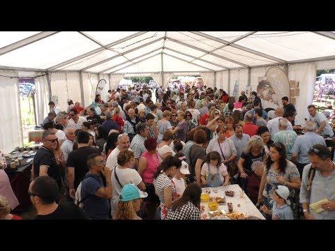 Feria de la Leche de Piélagos