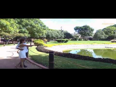 avicii-sweet-dreams-music-video