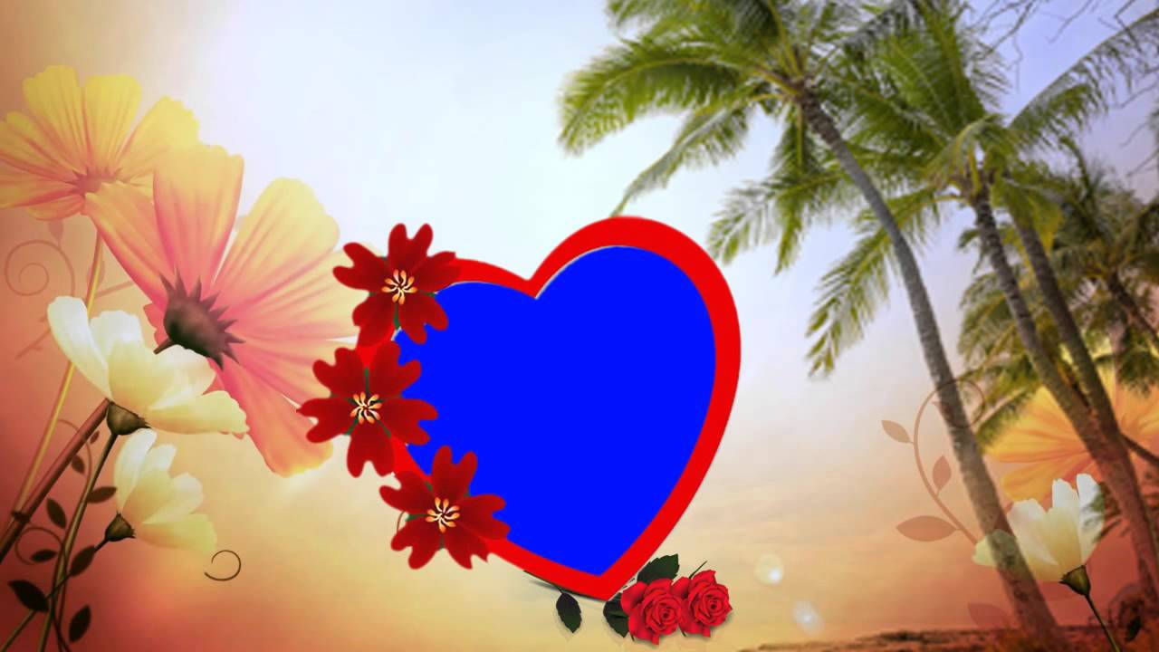 HD Beautiful Love Wedding Frame Background Animated Video Downloads ...
