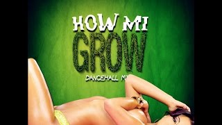 DJ KENNY HOW MI GROW DANCEHALL MIX OCT 2015