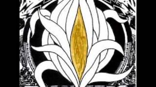 Toecutter - Rough Trade (Djrainbowejaculation)