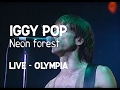 watch he video of Iggy Pop - Neon Forest (Olympia)