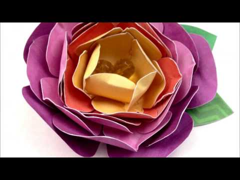 Paper Flower made in home