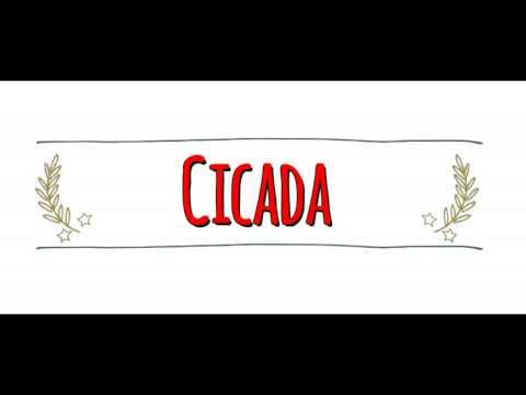 American Vs Australian Accent: How To Pronounce CICADA In An Australian Or American Accent