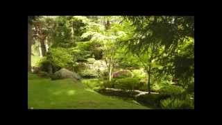 Tatton Park Japanese Garden Knutsford Cheshire.