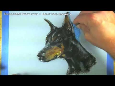 how-to-draw-a-dog-portrait---oil-pastels