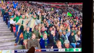 SA supporter blank camera stare | South Africa vs Ireland rugby
