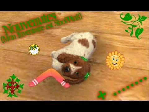 BOULEDOGUE CATS TÉLÉCHARGER FRANAIS NINTENDOGS