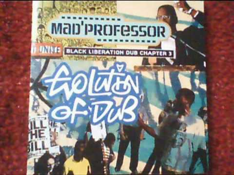 Mad´Professore Evolution Of Dub