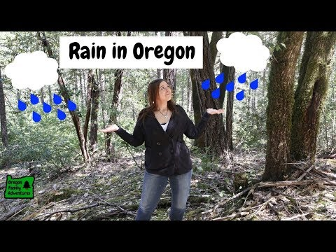 Does It REALLY Rain All The Time In Oregon?