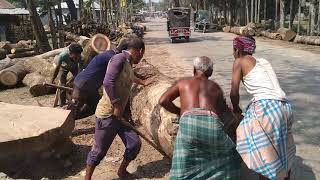 Tough! Very Dangerous and Tough Wood Cutting and Lifting by 10 Powerful Men in Saw Mill of Aisa