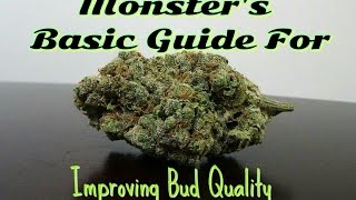 Monster's Basic Guide For Improving Bud Quality