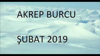 ŞUBAT 2019 BURÇ YORUMLARI - AKREP BURCU ŞUBAT 2019