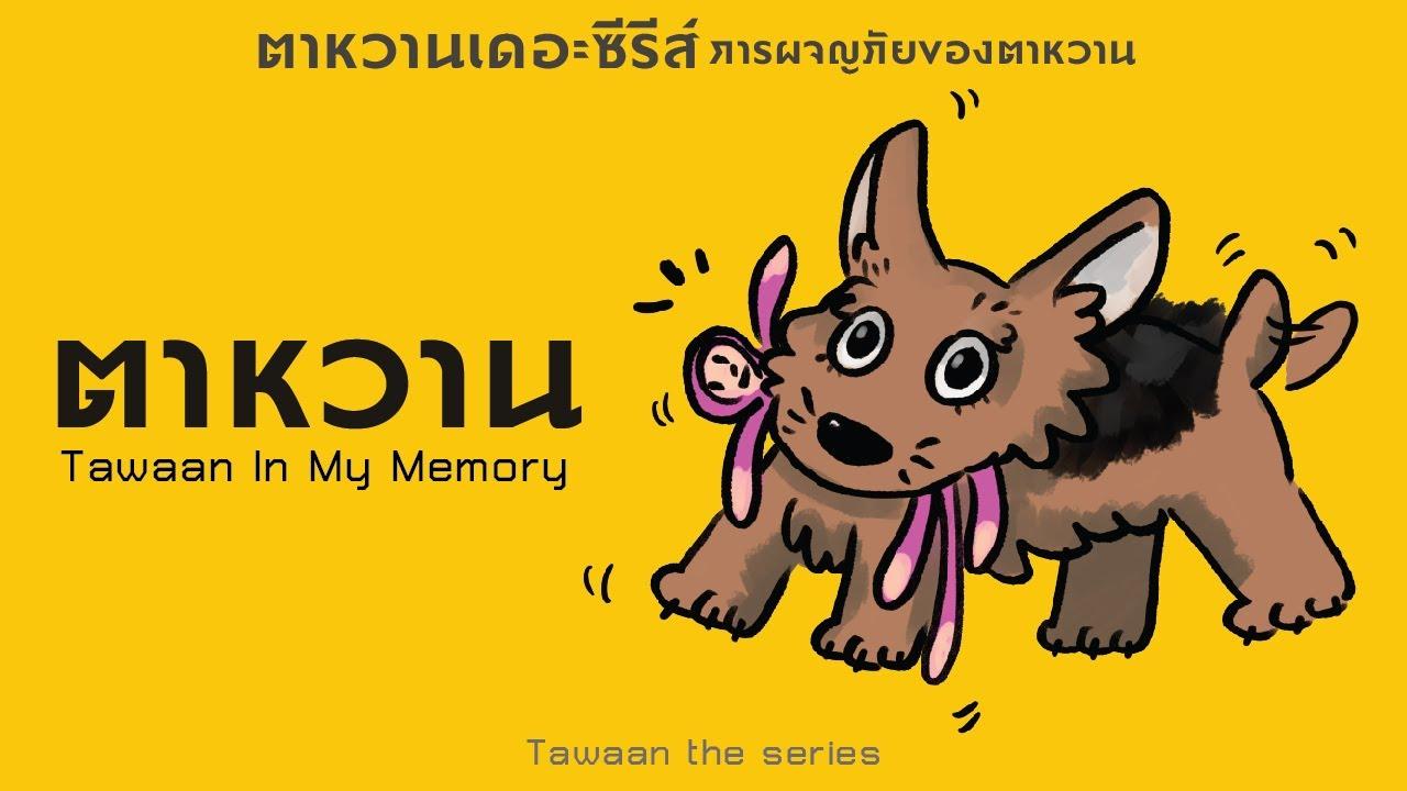 ตาหวานในความทรงจำ   Tawaan In My Memory