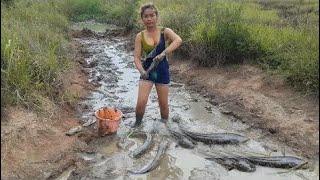 スマートな女の子によるすばらしい釣り - カンボジアの伝統的な釣り - カンボジアでの釣り方パート151 thumbnail