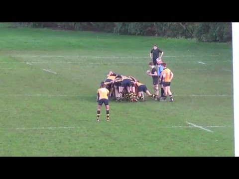 Colston's School vs Wellington College U15's