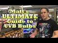 Matt's ULTIMATE Guide to UVB Bulbs!