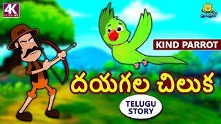 Telugu Stories for Kids - దయగల చిలుక | Kind Parrot | Telugu Kathalu | Moral Stories | Koo Koo TV thumbnail