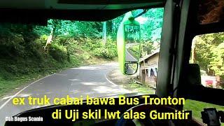 CAK BELA | uji skil driver bus Tronton GH lewat jalan extreme Hutan Gumitir Banyuwangi