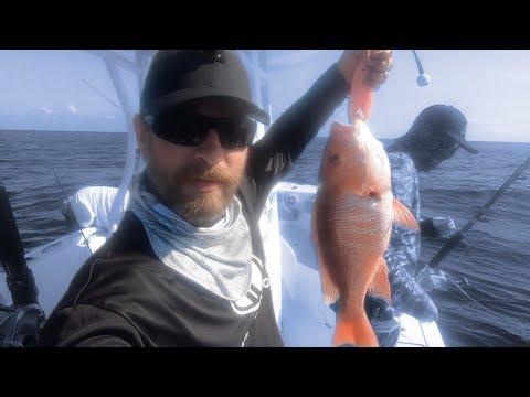 Snapper Season Opening Weekend! Plus Kingfish!