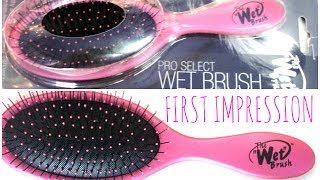 ♥ The Wet Brush- First Impression & Demo on Wet & Dry Hair! ♥