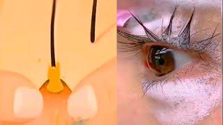 Top Trending Makeup Videos?Easy Makeup 2021  /Part 241/ 2021年の美しいメイクトレンド