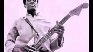 Jimmy Dawkins - Me, My Gitar and the Blues