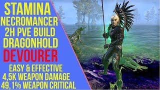 2H Stamina Necromancer PVE Build - Devourer - Dragonhold