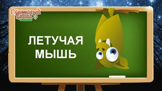 Обучающее видео для детей. Изучаем слова. Животные.