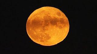 【写真まとめ】今夜は中秋の名月、実は満月は8年ぶり メカニズムは