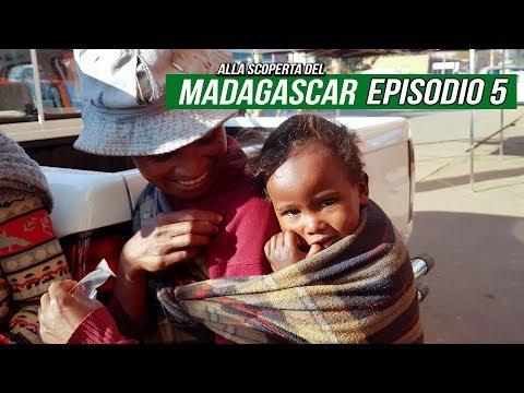 Ep5 • Viaggio Madagascar • Kirindy Forest, Baobab innamorato e Andasibe
