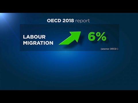 ОЭСР: миграционные потоки растут