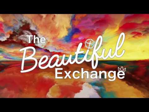 Beautiful Exchange Bumper