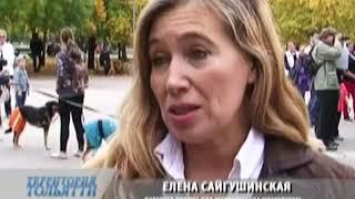 Директор приюта для собак в Тольятти