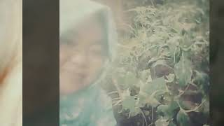 Jangan salahkan hijabku shohibatussaufa