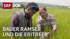 Bauer Ramser und die Eritreer | Flüchtlingsintegration in der Schweiz | Doku | SRF DOK