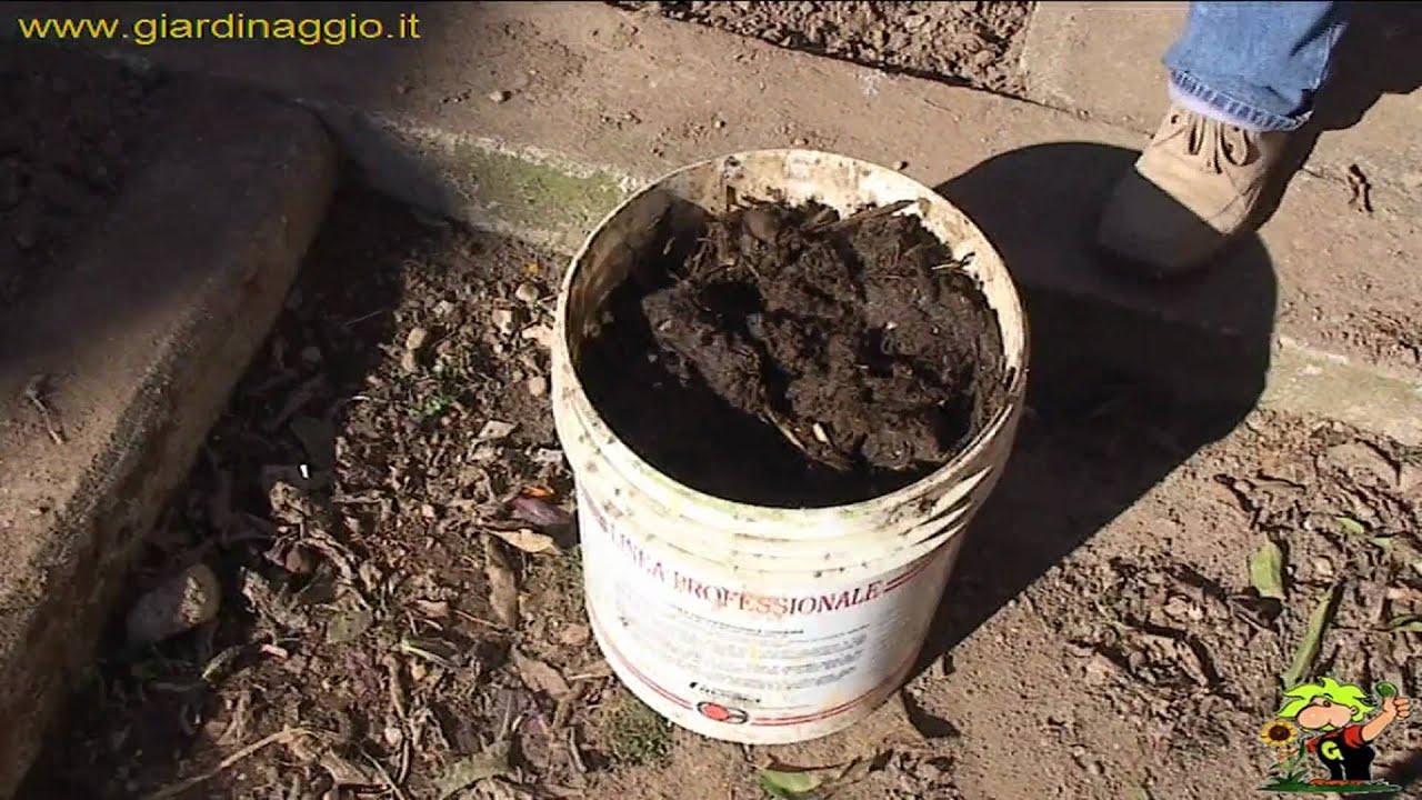 La semina nell 39 orto a file ed a spaglio youtube for Semina a spaglio