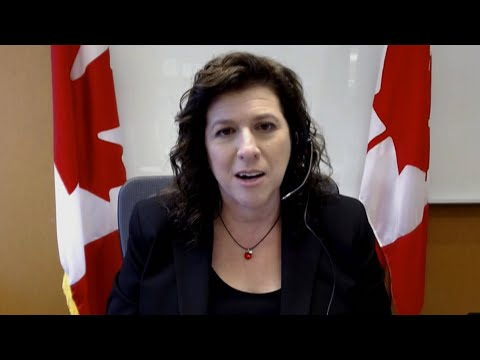 Auditor general breaks down report on PHAC's COVID-19 preparedness | One-on-one with Karen Hogan