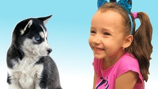 I Have A Pet | Animal Song | Nursery Rhymes by UT kids