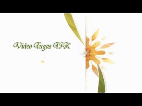 Maju tak gentar by wahyu imam syahputra - YouTube