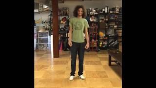 dan sings shut up and dance with me reddit post