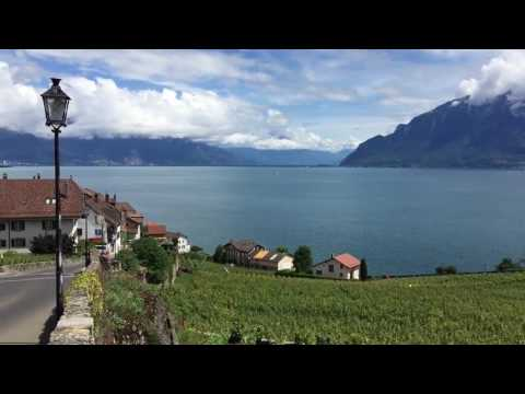 Lavaux vineyard, UNESCO World Heritage site  The Swiss Wine Route
