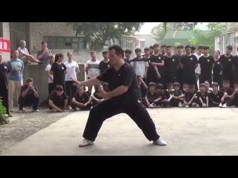 Chen Style Taijiquan at Wang Xian's School in Wenxian 2016