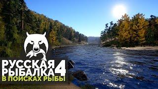 Русская Рыбалка 4 В поисках рыбы