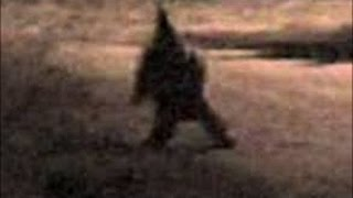 Top 5 Creepy Goblins Caught on Tape!