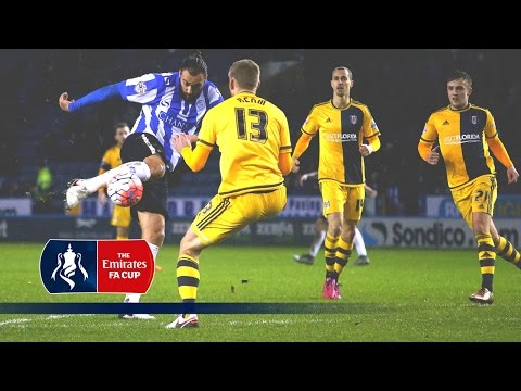 Sheff Wed 2-1 Fulham - Emirates FA Cup 2015/16 (R3) | Goals & Highlights