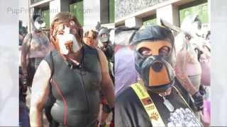 Pup Pride Mardi Gras Parade
